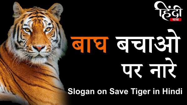 Slogan on Save Tiger in Hindi