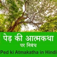 Essay on Ped ki Atmakatha in Hindi