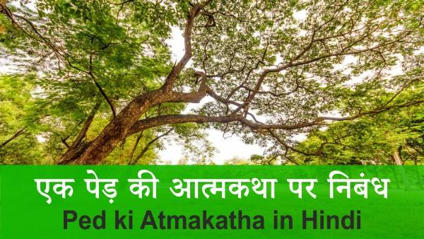 Ped ki Atmakatha in Hindi