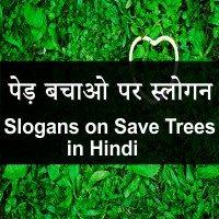 शिक्षा पर स्लोगन - Slogans on Education in Hindi