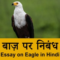 Eagle information in Hindi