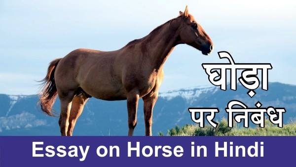 Essay on Horse in Hindi