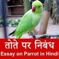 Parrot par nibandh
