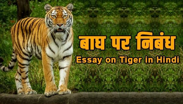 essay on tiger in hindi