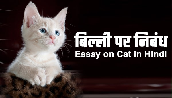 Essay on Cat in Hindi