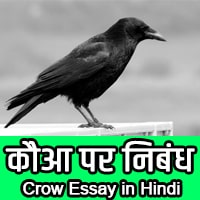 crow information in hindi