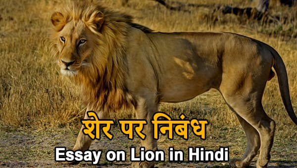 Essay on Lion in Hindi