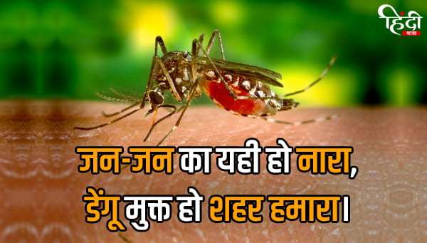 Dengue Slogan in Hindi
