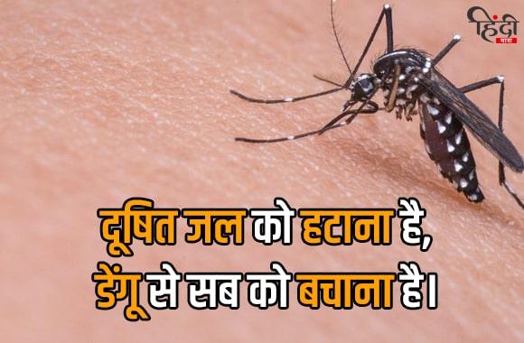 dusti jal ko hatana h, dengue se sab ko bachana h