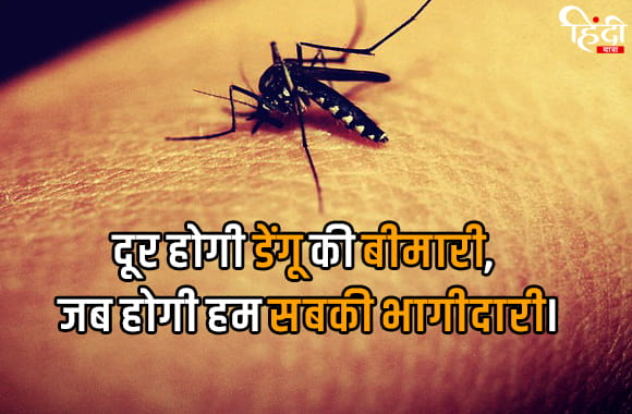 slogan on dengue prevention in hindi