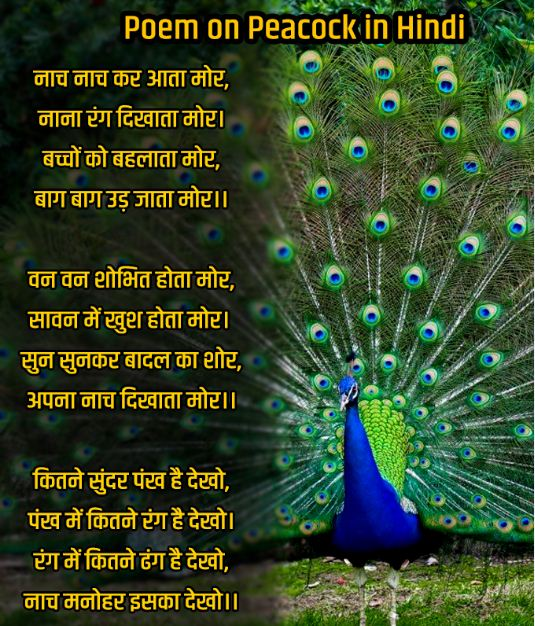 Poem on Peacock in Hindi